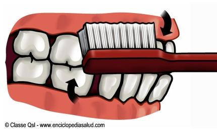 lavar-dientes